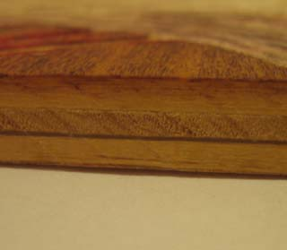 Section of Wood