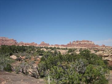 view from Elephant Canyon trail