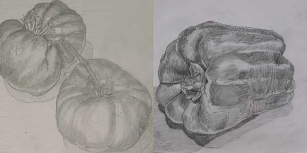 two sketches of vegetables, side by side
