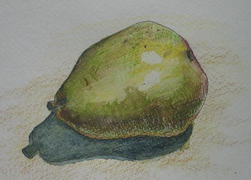 Watercolor Pencil Pear Drawing